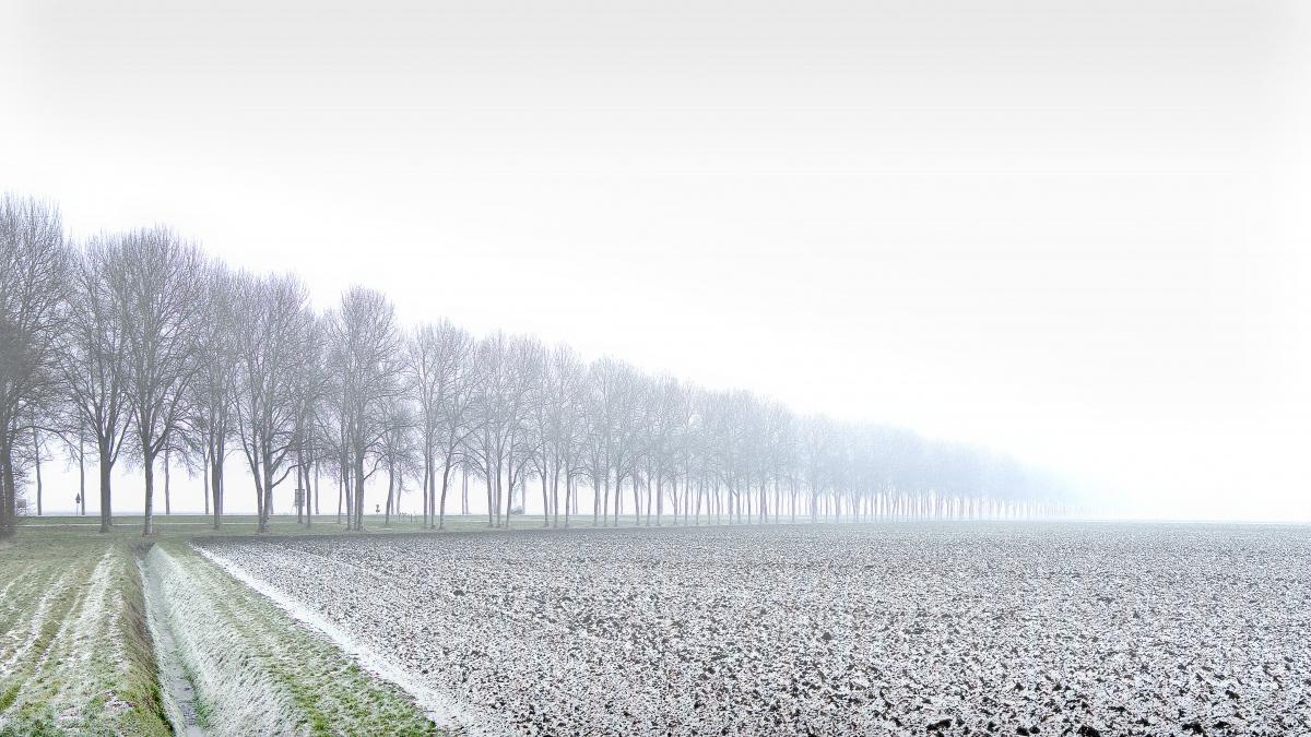 1rob-renshoff-winters-polderlandschap-1-332a8b952e5bc63d35105543edab5d6a8a07813f