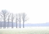 2rob-renshoff-winters-polderlandschap-2-7b498670d08841e6637bd161f9c423c5b6e9402a