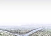 3rob-renshoff-winters-polderlandschap-3-390ccb862d96e5a86d23d40d49d1f80cd1a5e1cb
