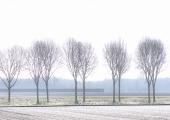 4rob-renshoff-winters-polderlandschap-4-1a5192d8d69c10195468dbc915b95f0c763ab81f